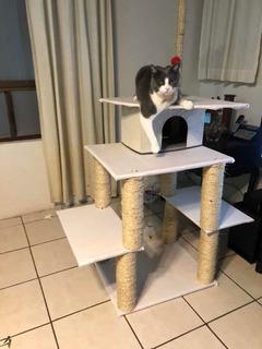 Mueble Para Gato