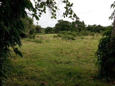 Terreno En Venta Tuxpan-cazones Km.8
