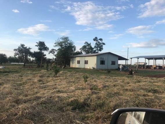 Fazenda Para Venda Em Dourados, Fazenda Regiao De Dourados Ms.5.800 Hectares R$ 185.600.000 - 36157