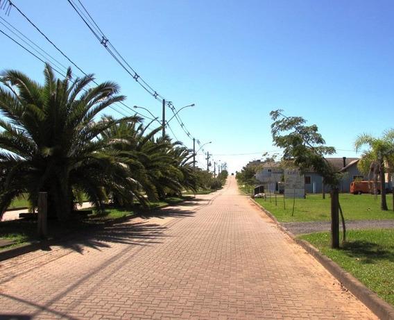 Terreno Residencial À Venda, Reserva Do Arvoredo, Gravataí - Te0946. - Te0946
