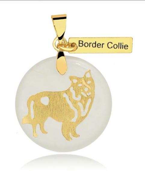 Colar Corrente Pingente Cachorro Border Collie