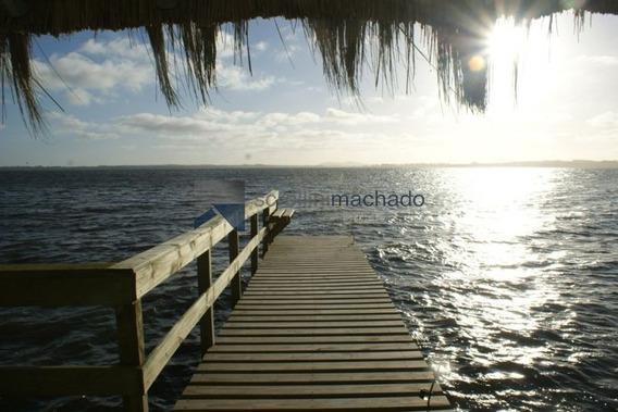 Chacra En Venta Punta Ballena 4 Dormitorios- Ref: 1685