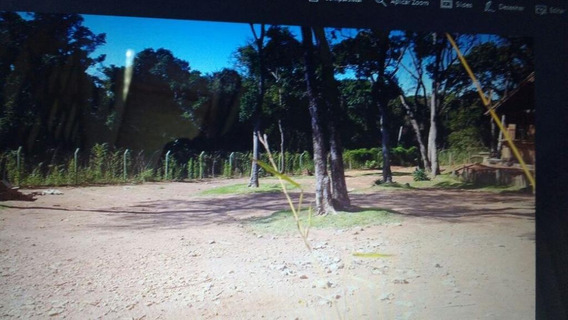Sítio Em Fazenda Primavera, Jarinu/sp De 2000m² Para Locação R$ 4.000,00/mes - Si183223