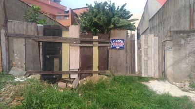 Terreno Residencial À Venda, Cidade Líder, São Paulo. - Te1665