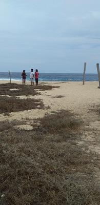 Venta De Terrenos En La Playa Bahias De Huatulco Baratos