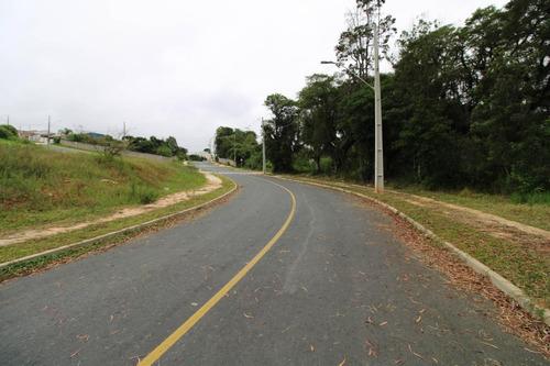 Área À Venda Com 3630m² Por R$ 720.000,00 No Bairro Campina Da Barra - Araucária / Pr - Te0239