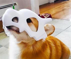 Capacete Máscara Cubone Pokemon Para Cão Cachorro