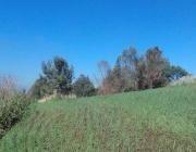 Terreno Muy Amplio En Venta En Chalco