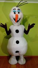 Paw Patrol Frozen Minnios Disfraz Corporeo Arriendo