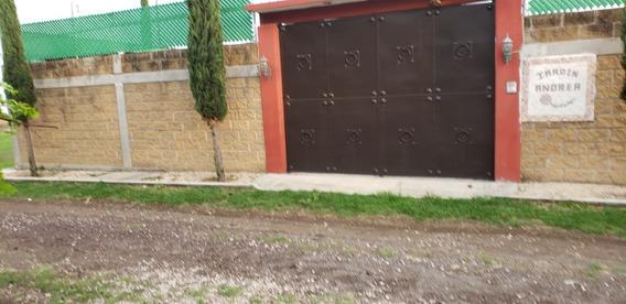 Jardin Andrea