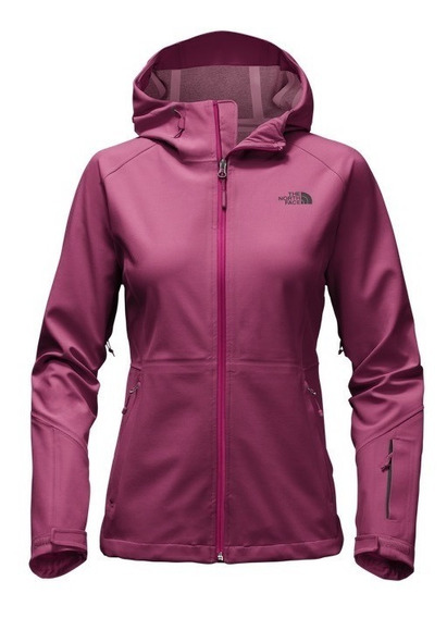 Chaqueta The North Face Apex Flex Gtx Jkt Dama