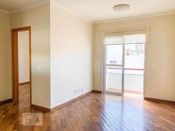 Apartamento Para Aluguel - Vila Itapura, 1 Quarto, 50 - 893047944