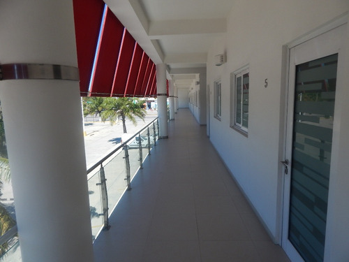 Imagen 1 de 9 de Departamento En Renta, Carmen, Campeche