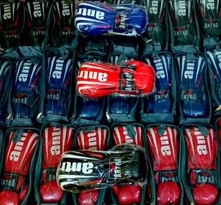 Guantes Pro Style Antra Boxeo Kick Boxing Cuero Sintetico
