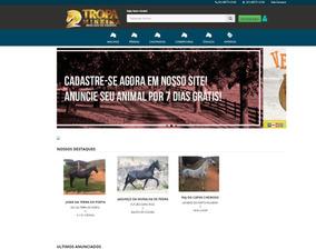 Crie O Website Da Sua Empresa - Profissional