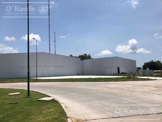 Deposito En Alquiler En Parque Industrial - Pitec - A Estrenar- 3000 M2 Zona Sur Florencio Varela
