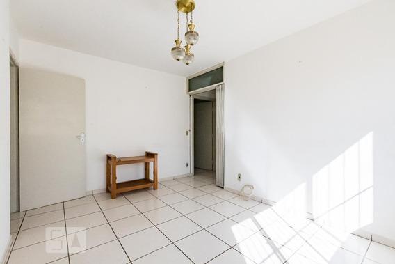Apartamento Para Aluguel - Jardim Planalto, 1 Quarto, 82 - 893026747