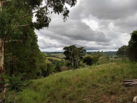 Sítio Com 6,48 Hectares , Na Região De Cruzília , Apenas 6 Klm Da Cidade , 5 Klm De Terra , Casa , Bom De Água - 809