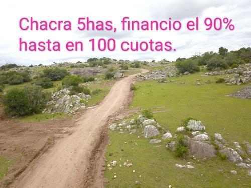 Chacra Campo