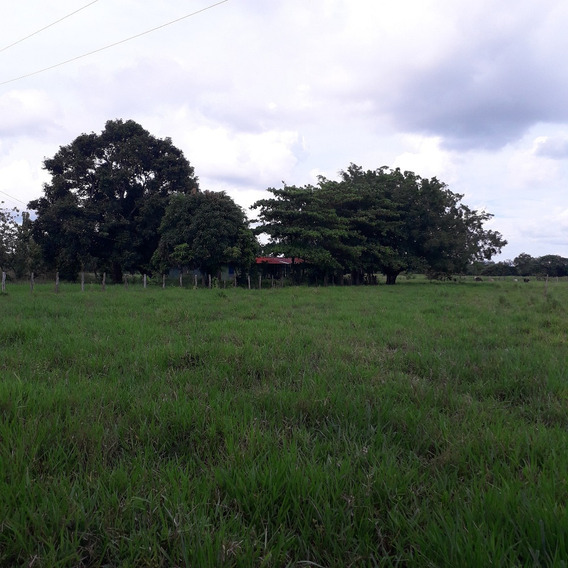 Fundo Via Achaguas 7 Hectareas