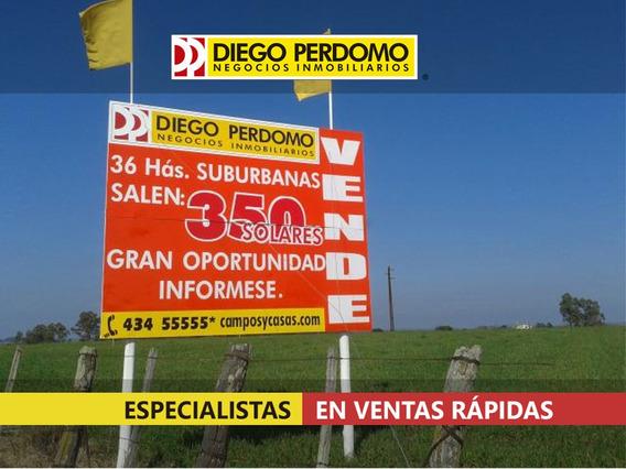 Solar En Venta 35,7 Has, Santa Lucía - Canelones