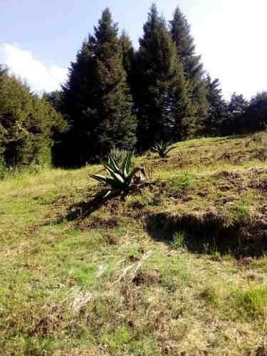 Terreno Venta Huixquilucan