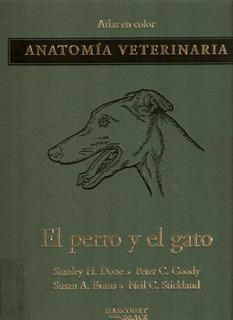 Atlas A Color Anatomia Veterinaria Del Perro Y Gato
