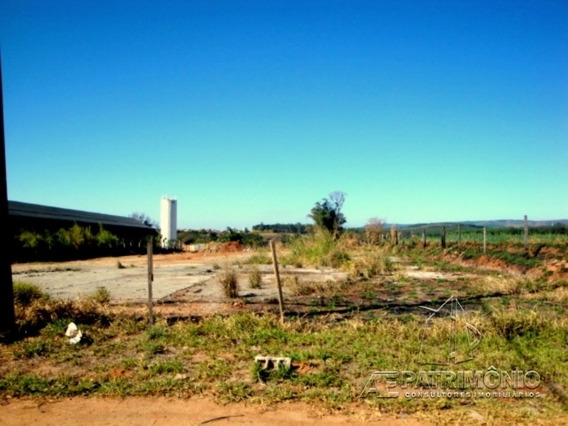 Area - Capoavinha - Ref: 333 - V-333