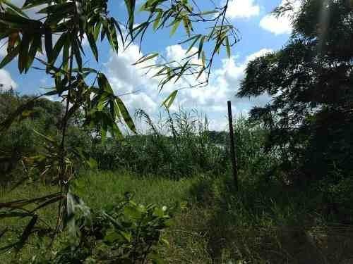 Renta De Terreno En Pánuco Veracruz, Calentadores Carr.tampico-valles