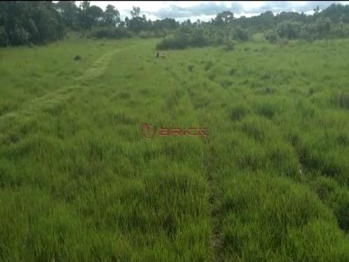 Imagem 1 de 9 de Fazenda Com 1.076,40 Hectares Na Região Duere, Tocantins. - Fa00023 - 69448240