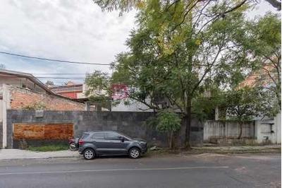 Terreno En Venta, Col. Lomas De Chapultepec