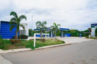 Locales Comerciales Proximo Al Merca Santo Domingo