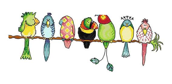 Papagaios Coloridos Carimbado Cruz Ponto Kit Diy Handmade Bo