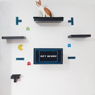 Muebles Y Repisas Para Gato Juego Completo