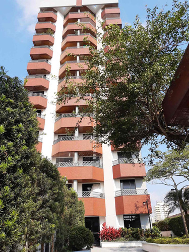 Imagem 1 de 30 de Excelente Apartamento À Venda Na Vila Mascote - Ap00138 - 69333473