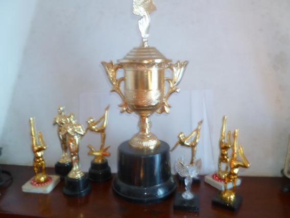 Lote De Trofeos Usados