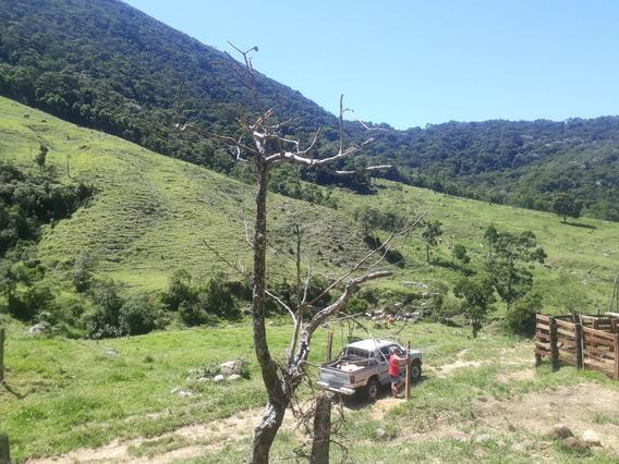 Fazenda No Alto Do Sanna Em Macaé Rj