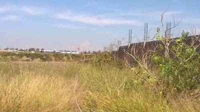 Terreno En Renta San Juan De Los Lagos