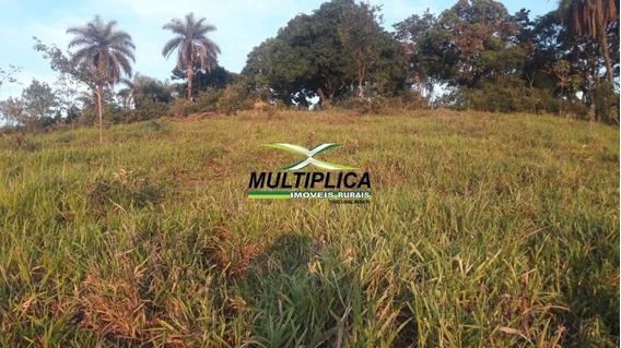 Fazenda A Venda Em Tiros Mg - 275