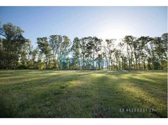 Manzanares - Hectareas Venta Usd 500.000