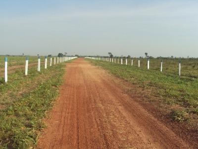 Fazenda Em Couto De Magalhães - To, Dupla Aptidão - 413