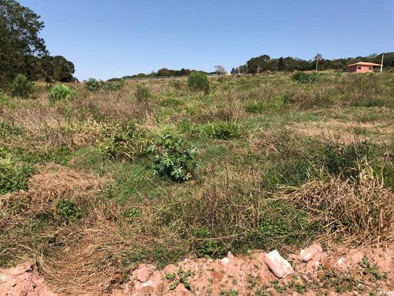Vendo Terrenos De 1000 M2 Demarcados Pronto Para Construir J