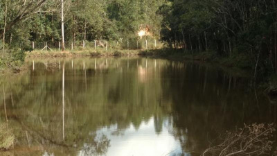 Lote Para Comprar Zona Rural Itabirito - Veg232