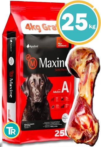 Imagen 1 de 6 de Ración Para Perro - Maxine Adulto + Obsequio Y Envío Gratis