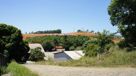 Área Com 20.000m² Em Viana - 2299