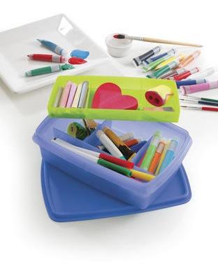 Tupperware Caja Organizadora Con Divisiones