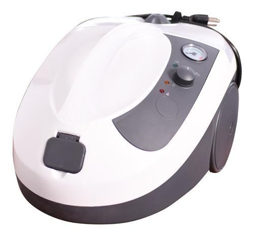 Imagen 1 de 8 de Maquina De Vapor - Limpieza Con Vapor - Desinfección Intakta