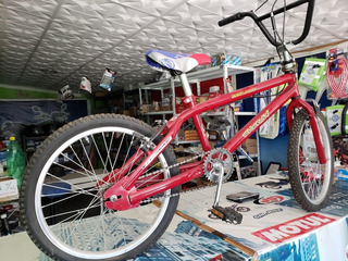 Bicicleta De Niño Rodado 20.