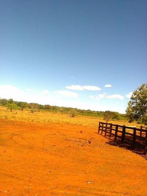 Fazenda Em Barra Do Ouro - To, P/ Soja - 372