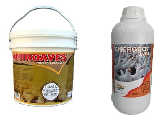 Índio Gigante Galinhas Caipiras Aminoaves E Energect Aves